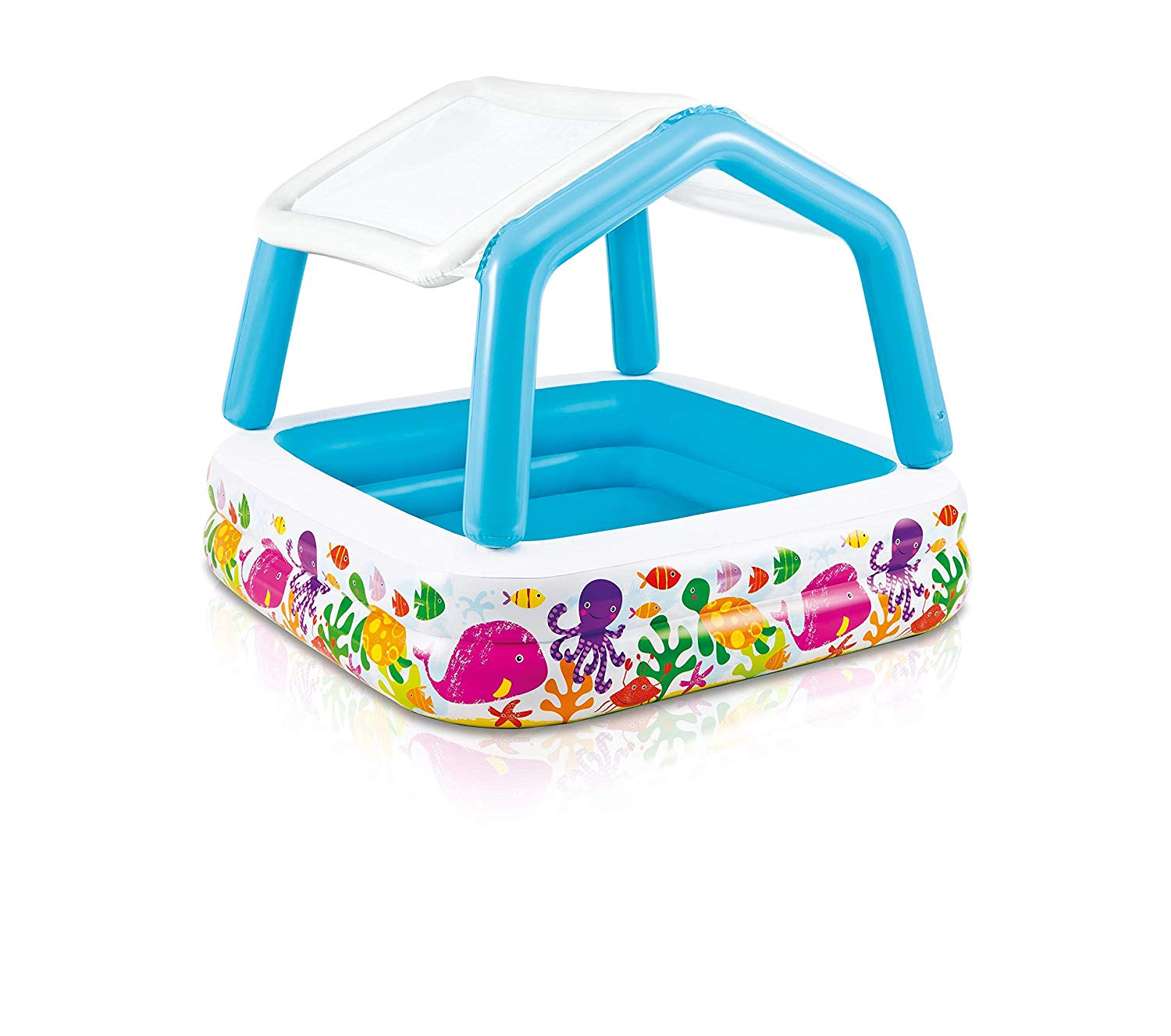 Intex Pool amazon